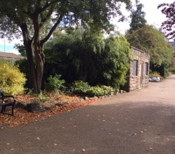 Expressions of interest are being invited from businesses, charities or special interest groups interested in using Derbyshire Dales District Council's award-winning Hall Leys Park to enhance visitors' experience.