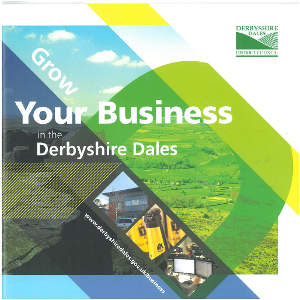 The Dales business environment